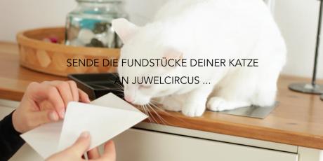 portfolio_juwelcircus